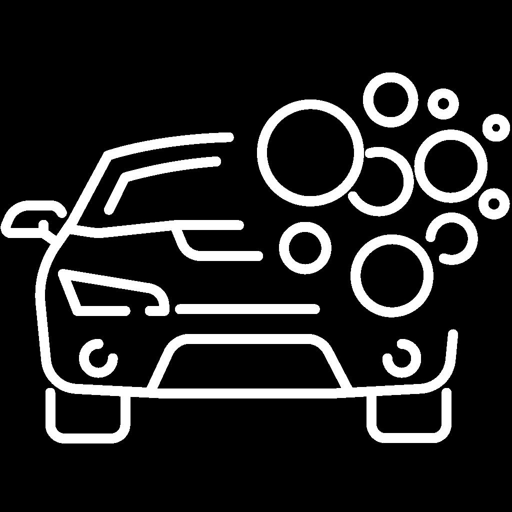 Automobilio plovimo paslaugos